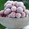 photo of a bowl of frozen grapes