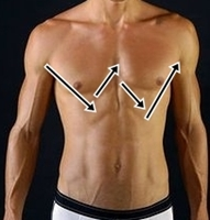 photo of the W zone on the chest of a man