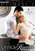 cover of the adult movie An Office Romance